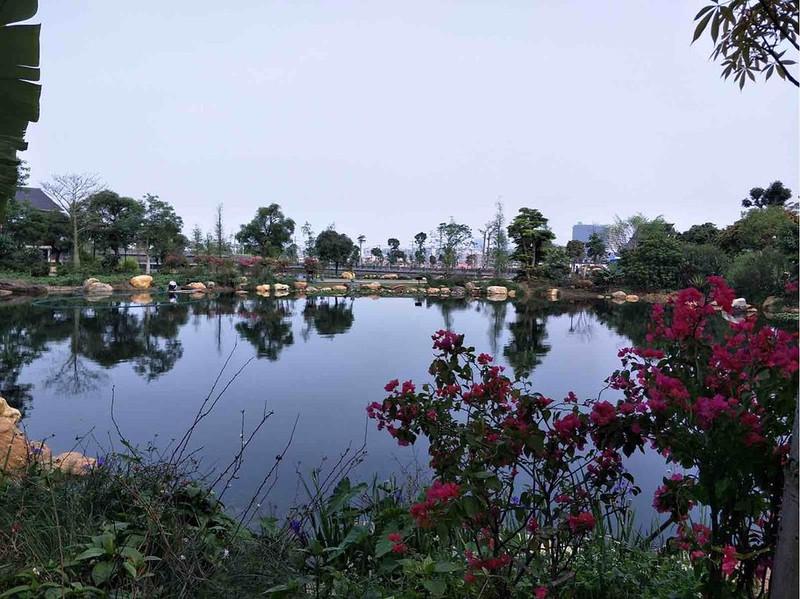 青秀山风景区位于南宁市区往东南约9公里处的邕江江畔