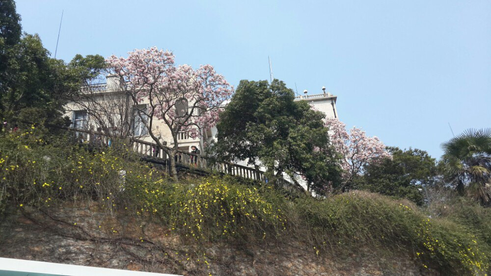 春天的松江余山&嘉善西塘&金山嘴漁村二日游2016