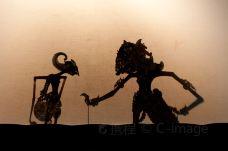 龙在天皮影表演-平遥-C_image